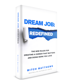 dream job redefined book